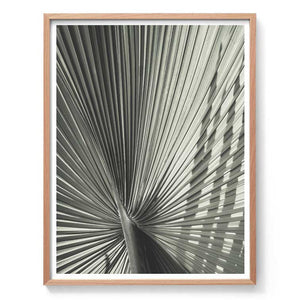 Green Fan Palm Print