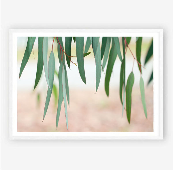Among the Gum Trees Print