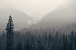 Misty Mountains Photography Print