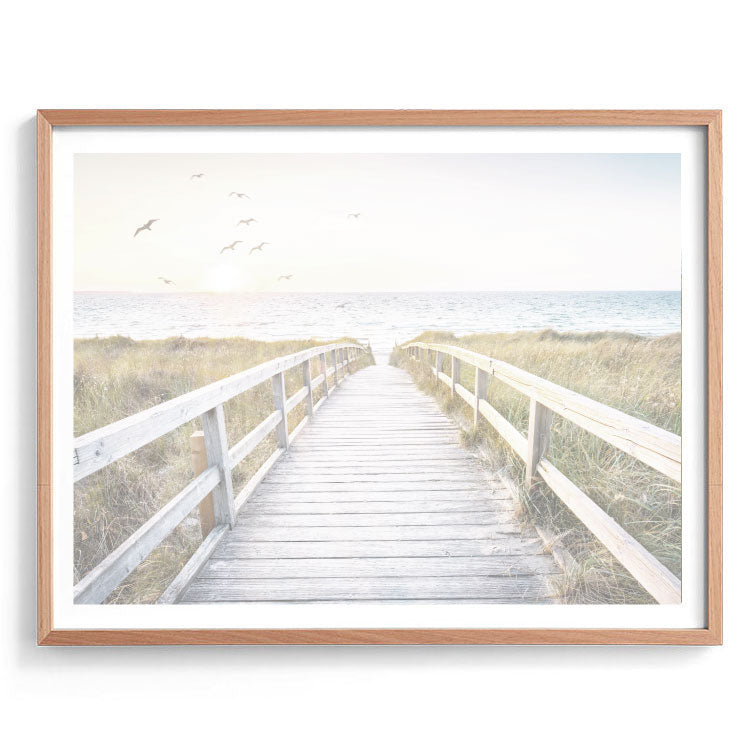 Morning Boardwalk Photography Print