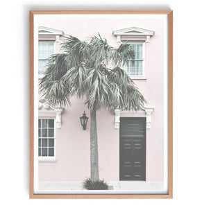 Palm Doorway Print