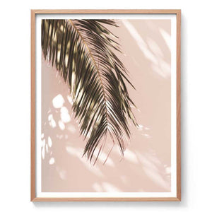 Palm Shadow Wall Art Print