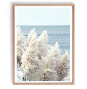 Pampas by the Sea Unframed A2