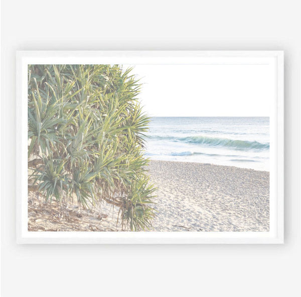 Pandanus Palm Photography Print