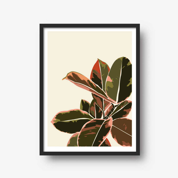 Rubber Plant Illustration Print