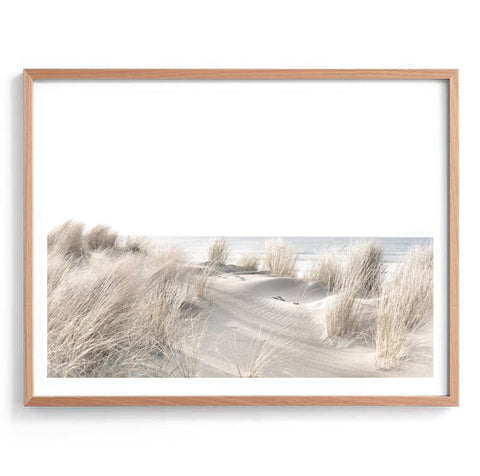 Beach Sand Dunes Photography Print
