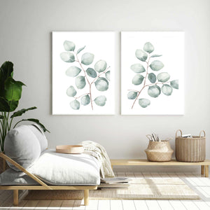 Silver Dollar Eucalyptus Watercolour Set of 2