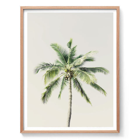 Tropical Green Palm Print