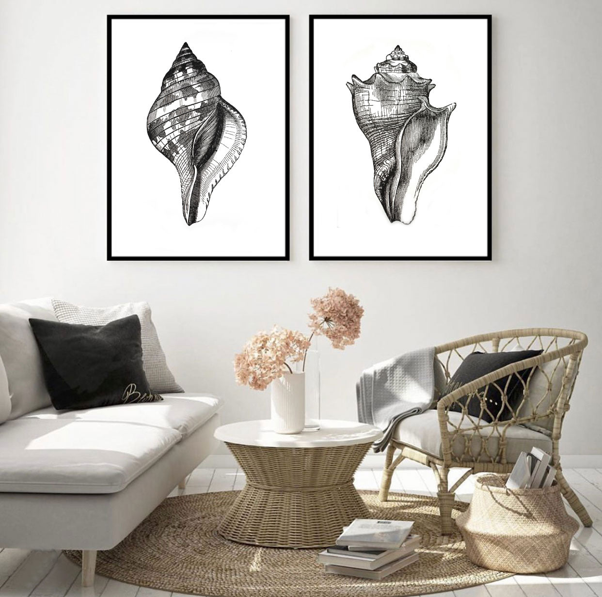 Vintage Shell Illustration Set of 2