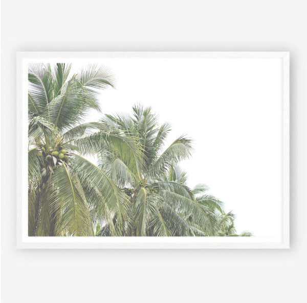 Faded Palms Wall Art Print
