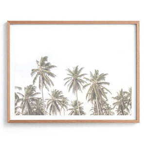 Palms for Days Print