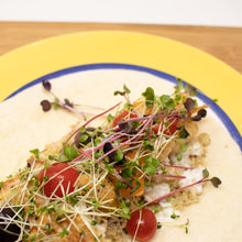 Tangy choy microgreens on fish taco