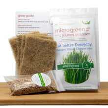 Wheatgrass Grow Kit (Refill Kit)