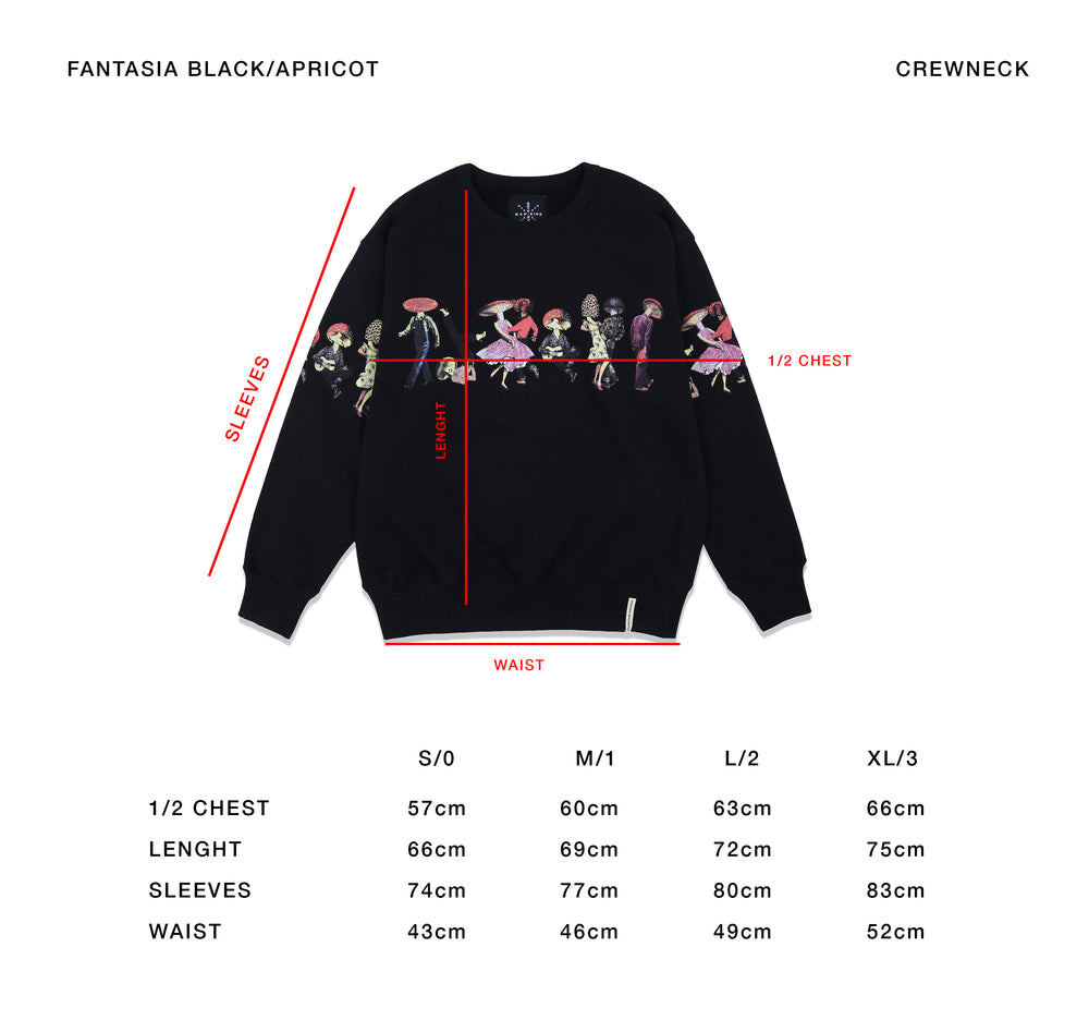 Load image into Gallery viewer, FANTASIA APRICOT - CREWNECK