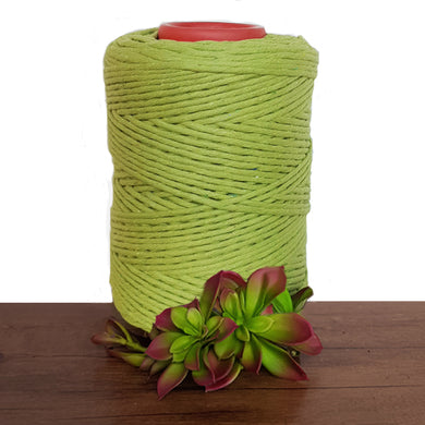 Avocado Luxe Cotton Single Twist Cord 1kg