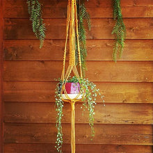 Clearance - DIY Macrame Kit - Ivy Plant Hanger (selected colours only)