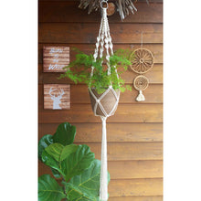 DIY Macrame Kit - Single Plant Hanger Natural