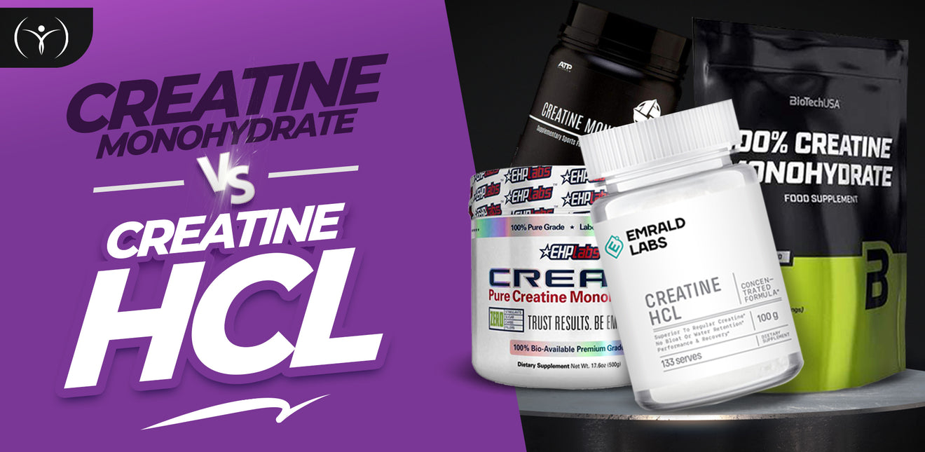 Creatine HCL vs Creatine Monohydrate | Which is best for you?