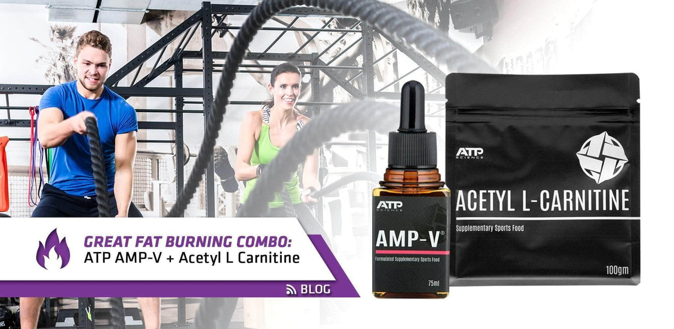 Why is Amp-V stacked with Acetyl L-Carnitine a great fat burning combo?