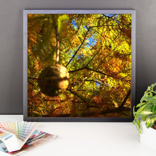 Days of Autumn - Framed photo paper poster