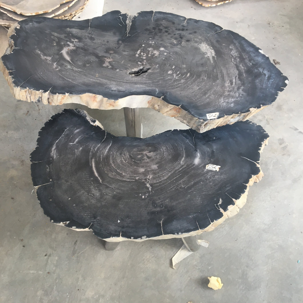 Petrified Timber Coffee Tables with Brass Legs