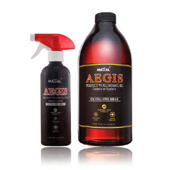 AEGIS PH Perfect Volume & Curl 컬고정제 - ILJIN