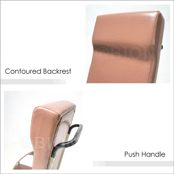 Contoured Backrest and Push Handle