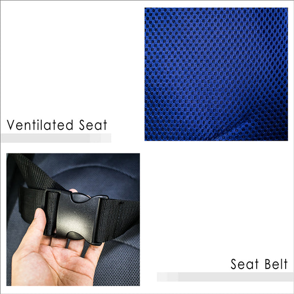 Ventilated Seat and Seat Belt