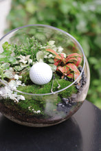 Golf lover moss plant (White)