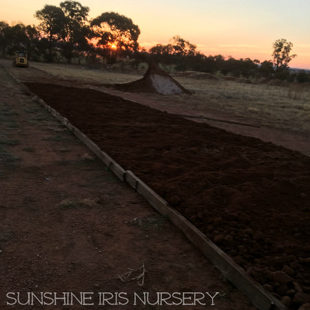 Expansion at Sunshine Iris Nursery