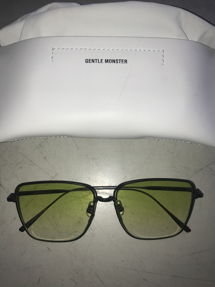 Sage Glass Gentle Monster Sunglasses