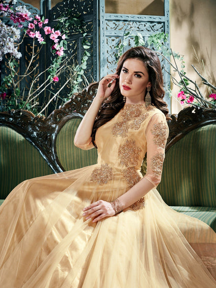 Forever Beige Net Party wear Embroidered Gown