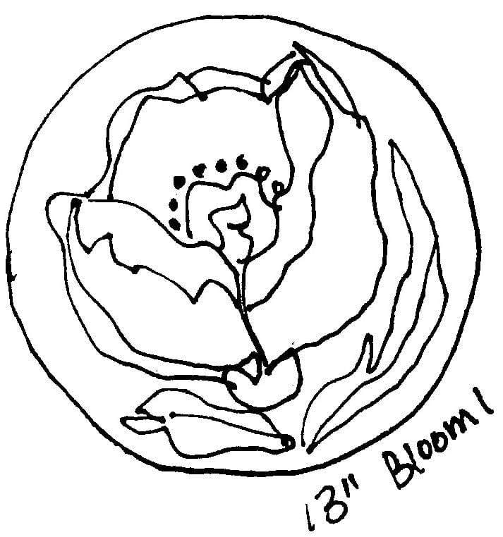 "update alt-text with template Bloom #1 - Rug Hooking Pattern 13"" Round-Patterns-vendor-unknown-Rug Hooking Kit -Rug Hooking Pattern -Rug Hooking -Deanne Fitzpatrick Rug Hooking Studio -Is rug hooking the same as punch needle?"