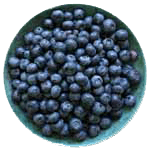 blueberries ingredient