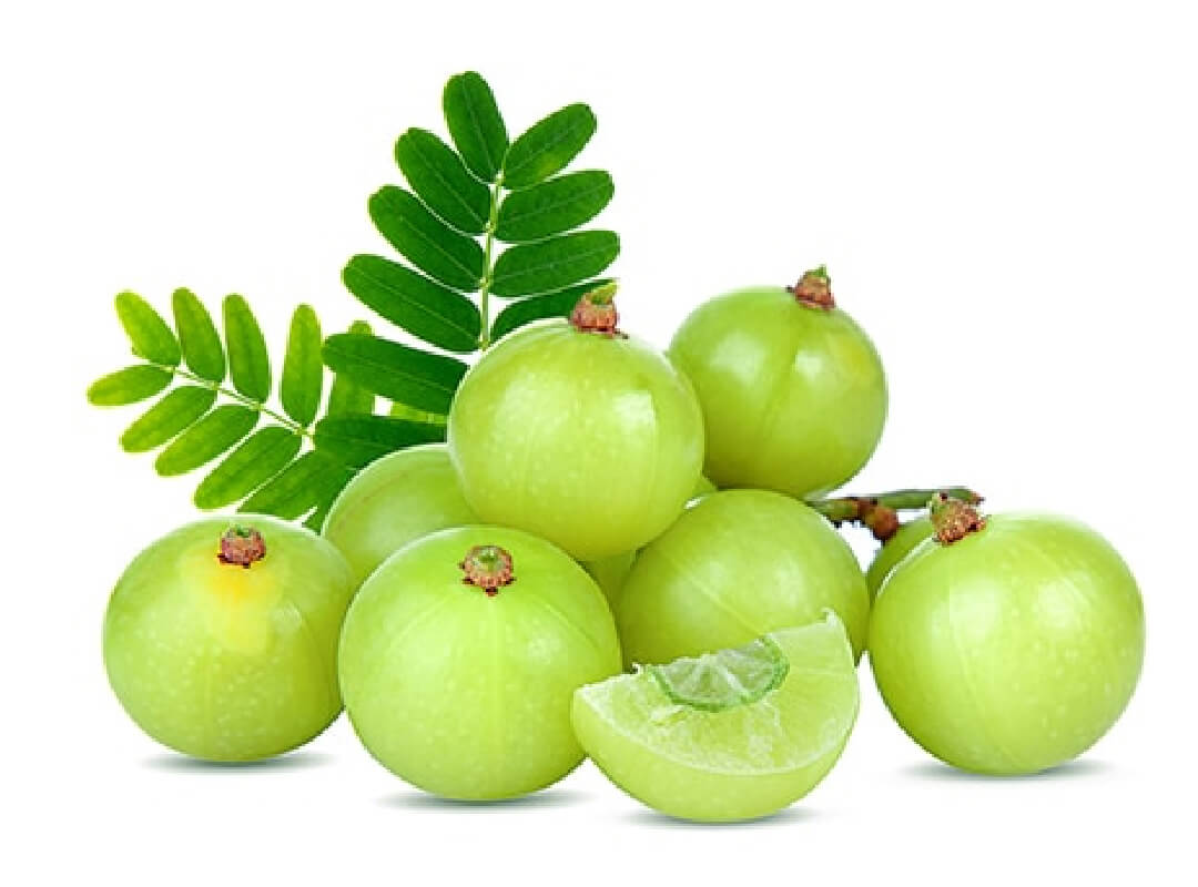 WHY AMLA VITAMIN C?