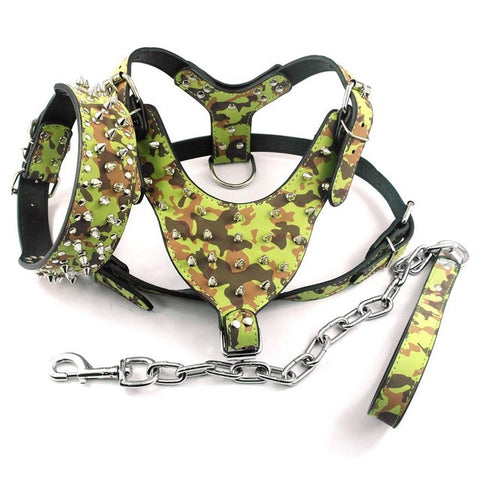 Leather Spiked Harness & Leash & Collar