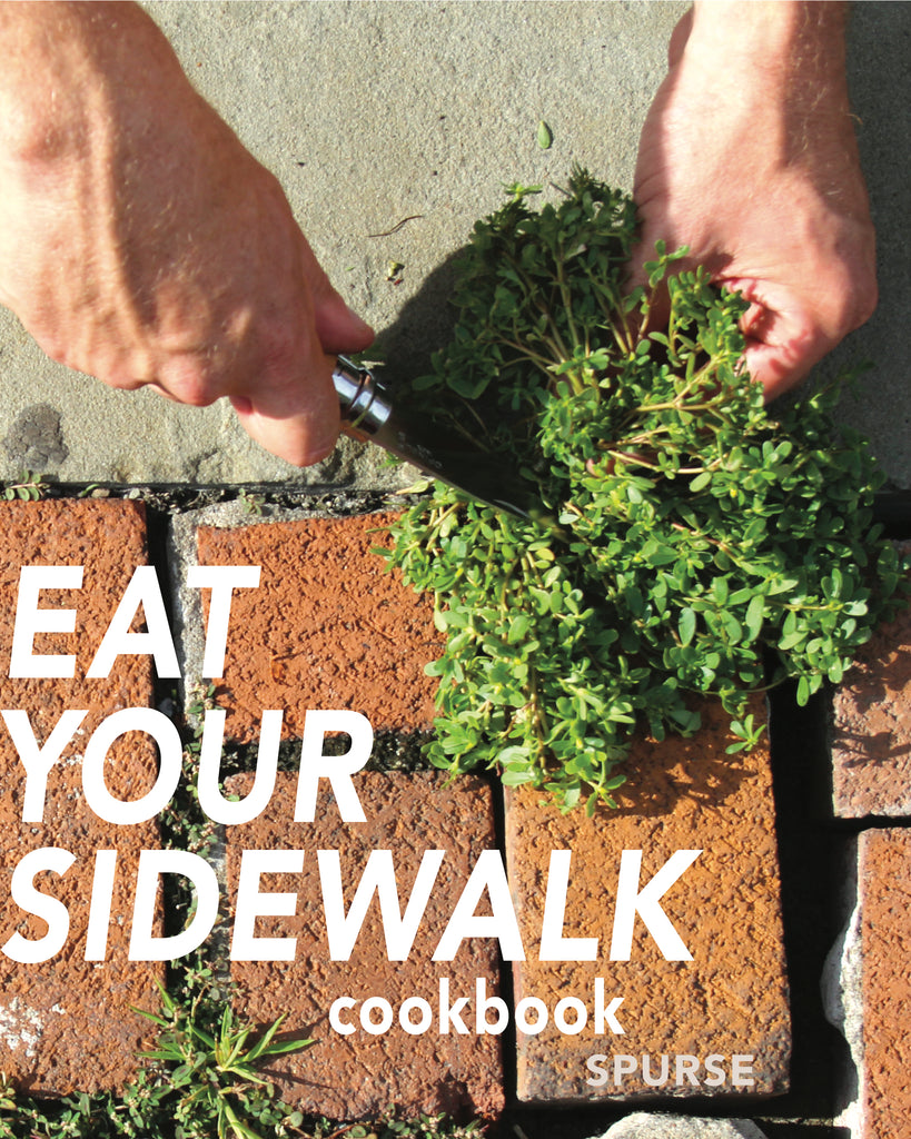 René Redzepi endorses the EAT YOUR SIDEWALK COOKBOOK!