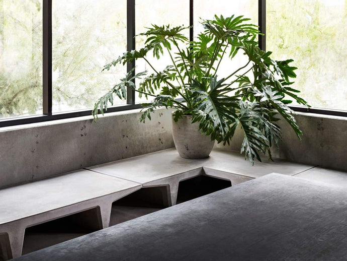 Concrete Finish Design Effect Walls for Kanye West's Studio