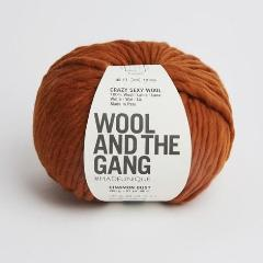 Crazy Sexy Wool - Cinnamon Dust