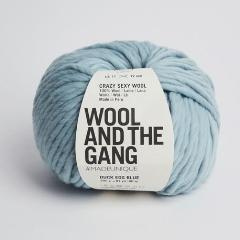 Crazy Sexy Wool - Duck Egg Blue