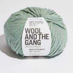 Crazy Sexy Wool - Eucalyptus Green