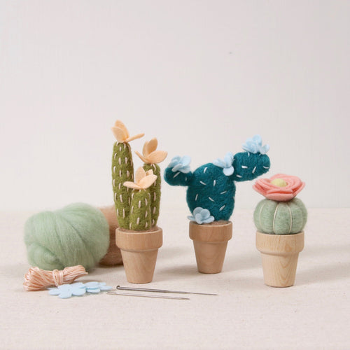 Cactus Needle Felting Kits