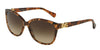 Dolce & Gabbana DG4258 255013 BROWN MARBLE Specs at Home