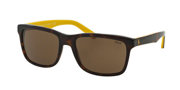 POLO PH4098 500373 VINTAGE DARK HAVANA Specs at Home