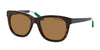 POLO PH4105 557783 SHINY DARK HAVANA (Polarized) Specs at Home