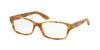 RALPH LAUREN RL6139 5304 HAVANA PARIS Specs at Home