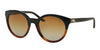 RALPH LAUREN RL8138 5581T5 BLACK GRADIENT HAVANA (Polarized) Specs at Home