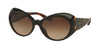 RALPH LAUREN RL8139 558713 TOP STRIPED HAVANA ON BLACK Specs at Home