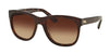 RALPH LAUREN RL8141 50033B DARK HAVANA Specs at Home