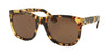 RALPH LAUREN RL8141 50043G SPOTTY HAVANA Specs at Home